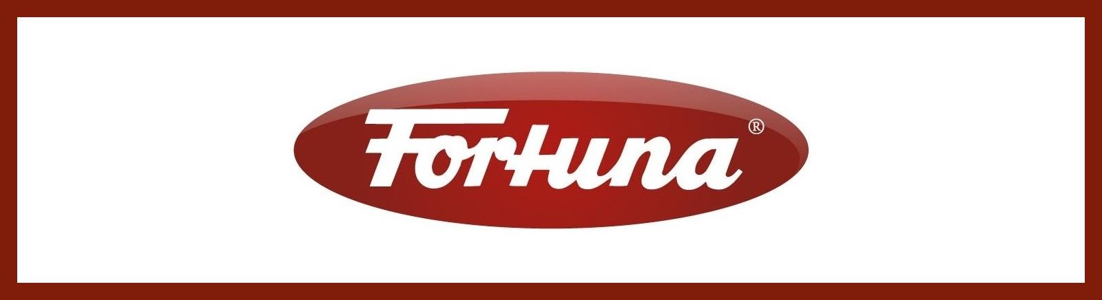 Fortuna Herrenschuhe online kaufen im Shop von GISY