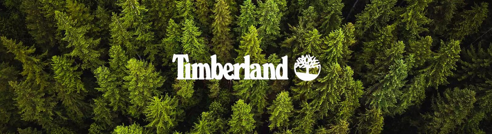 Timberland Schnürschuhe für Damen im Online-Shop von GISY kaufen