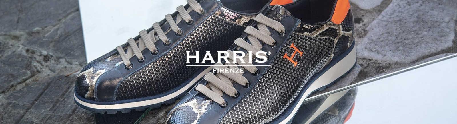 Harris Halbschuhe für Herren im Online-Shop von GISY kaufen
